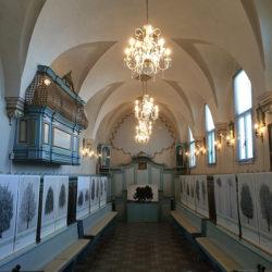 Allestimento nella Chiesa della Santissima Trinità