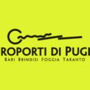 sponsor2011-24